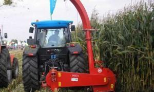 maszyna przeznaczona jest do zbioru kukurydzy na zielonkę